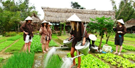 Be a farmer at Tra Que Vegetable Village