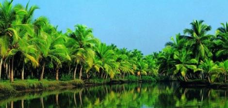 Ben Tre - Hometown of coconut